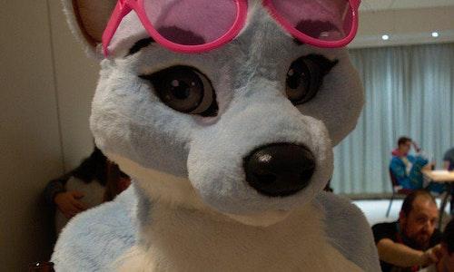 Fursuit glasses